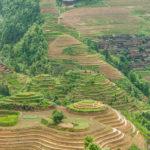 Wandern von Dazhai nach Ping'An durch die Reisfelder