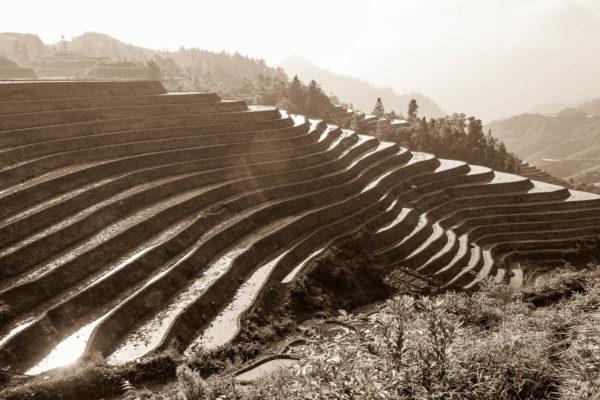 Reisterassen, Dazhai, China, Dragon's Backbone
