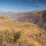Wanderung in den Colca Canyon