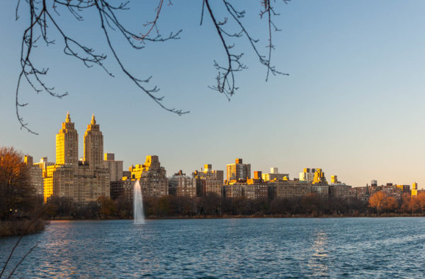 New York, Central Park, See