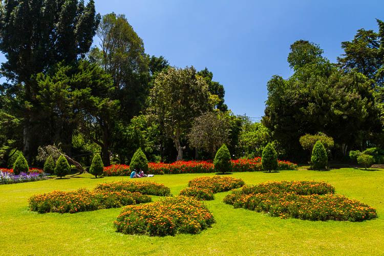 Kandy, Botanischer Garten, Sri Lanka