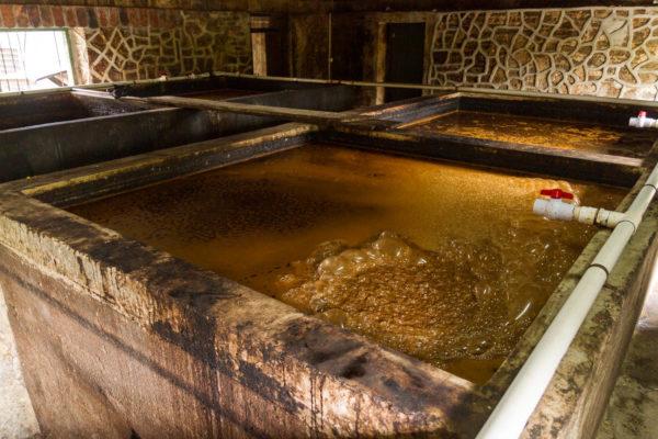 Gärbottich, Rumherstellung