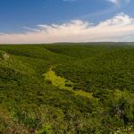 Ausflug zum Addo Elephant National Park