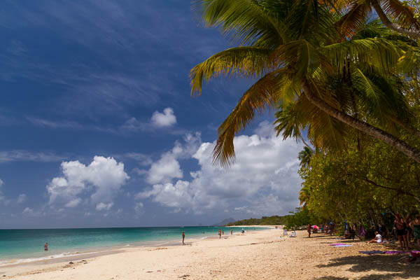 Grand Anse des Salines (Martinique)