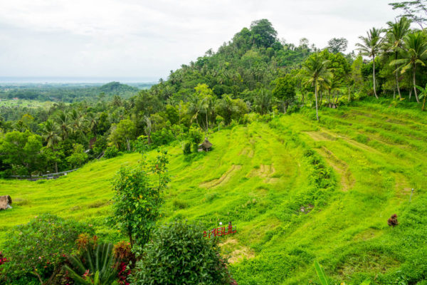 Bukit Jambul, Bali