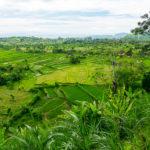 Candidasa – Im Osten Balis