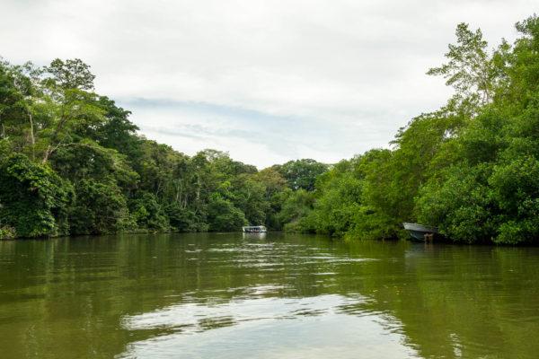Kanal, Dschungel, Costa Rica, Tortuguero
