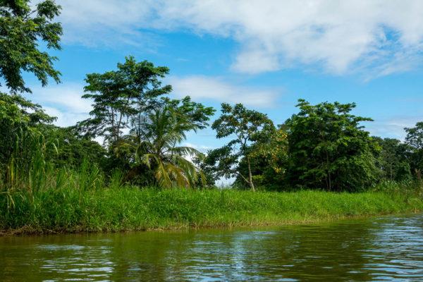 Tortuguero Kanal, Puerto Limon, Costa Rica