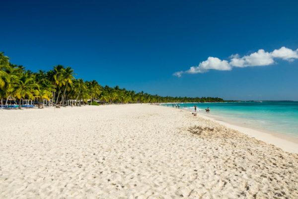 Dominikanische Republik, Saona, Palmen, Strand, Karibik