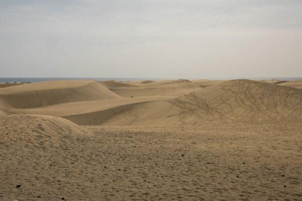 Dünenlandschaft, Mas Palomas, Gran Canaria
