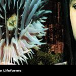 L wie Lifeforms (Future Sound Of London)